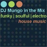 DJ Mungo in the Mix (320) Big Tunes of 2015 (4 Hour Mix)