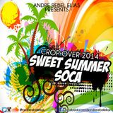 Andre Rebel Elias Presents Sweet Summer Soca 2014