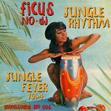 JUNGLE RHYTHM - Jungle Fever Vol.4