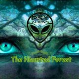 Bruno Vibetech- opening set  PsyAliens The Haunted Forest party