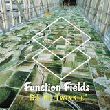Function Fields