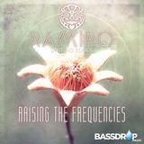 Ramiro - Raising The Frequencies