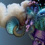 A Monstrous Psychedelic Bubble Exploding in Your Mind Vol.3 by THE AMORPHOUS ANDROGYNOUS