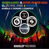 Martin Garrix Vs. Botnek X Dimitri Vegas Vs. Like Mike, DVBBS & Borgeous -  Animals X Tsunami X Stam