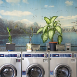 Laundromat & Magazines