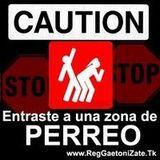 Reggaeton Violento(;