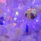 Blog cuộc sống số đặc biệt: Merry Christmas!