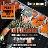 Pilgrim OnlyOldskoolRadio Oldskool Jungle Drum & Bass Special