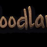 DJ contest for WOODLAND Festival 2017 - Mindwalk