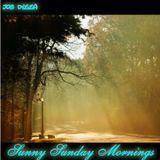 Sunny Sunday Mornings I