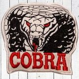 Michinyc Cobra Session
