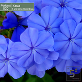 Kaua - 5 and Dime Recordings Podcast March 2014