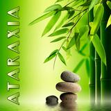MK-Ultra - Ataraxia