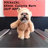 DJChaChi's 25Min Calorie Burn (Hip Hop)