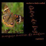 """Gotas de Luz """"Mariposa marrón de madera """" (Programa 09)"""