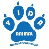 VIDA ANIMAL - Animales en peligro de extinción