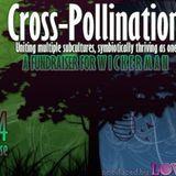 DJ Set from Love Tribe's Cross-Pollination
