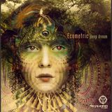 DEEP FOREST - ECOMETRIC