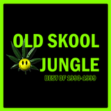 Old Skool Jungle: Best of 1990-1999 - 3 hour digital mix