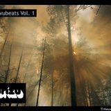 TNW092 - Lorenzo Kurizu - Shivubeats Vol. 1