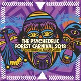 Psychedelic Forest Carnival Warm Up Mix