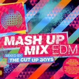 MINISTRY OF SOUND-MASH UP MIX EDM-THE CUT UP BOYS-CD2
