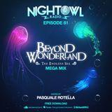 Night Owl Radio 081 ft. Beyond Wonderland 2017 Mega-Mix