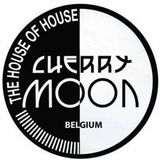 Ritchie Hawtin @ Cherry Moon 13-05-1994 (2 years rave explosion)