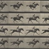 Lenticular Horse Valentines from February 18, 2019