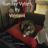 Sunday Vybes By Vincent