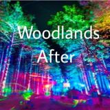 WOODLANDS AFTER  (5-days-left-mix)