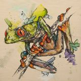 Swamp Frog Serenade