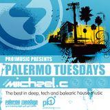 Palermo Tuesdays - Episode 083 - mixed by Nenad Mandic (live)