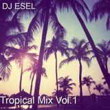 DJ ESEL - TROPICAL MIX VOL.1