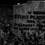 SEER 343 - In Memory Of Sylvia Plath
