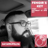 Fengir's Key 04 - datafruits.fm