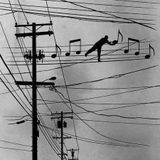 μουσικη συνενοχοι 3-10-2017