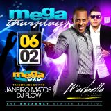 DJ Flow + Janeiro Matos - Marbella Broadcast 06-02-16