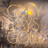 Gray Days and Gold - February 2020