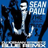 """Sean Paul - She Doesn't Mind (DJ Iceman Streetz """"Blue"""" Remix) - 128bpm"""