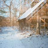 Wintermix 2013