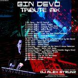 Dj Alex Strunz @ GIN DEVO Tribute - 12-06-2016
