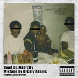 Good Dj, Mad City by Grzly Adams (Beatevolution/Berlin)
