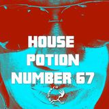 House Potion Number 67