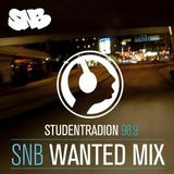 SNB Wanted Mix feat. Sonic87