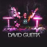 David Guetta - DJ Mix (15.12.2012)