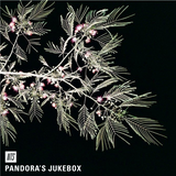 Pandora's Jukebox - 16th February 2016