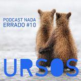 Podcast Nada Errado #10 - Ursos