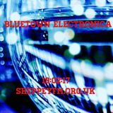 Bluetown Electronica live show 19.02.17