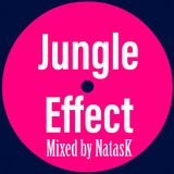 Jungle Effect mixed by NatasK